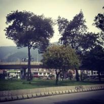 IMG_20121122_154135