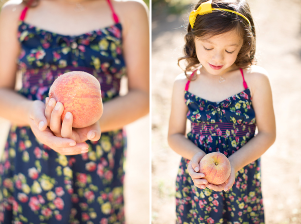schnepf-farms-peach-orchard-fruit-shoot-picking-diana-elizabeth-photography-001