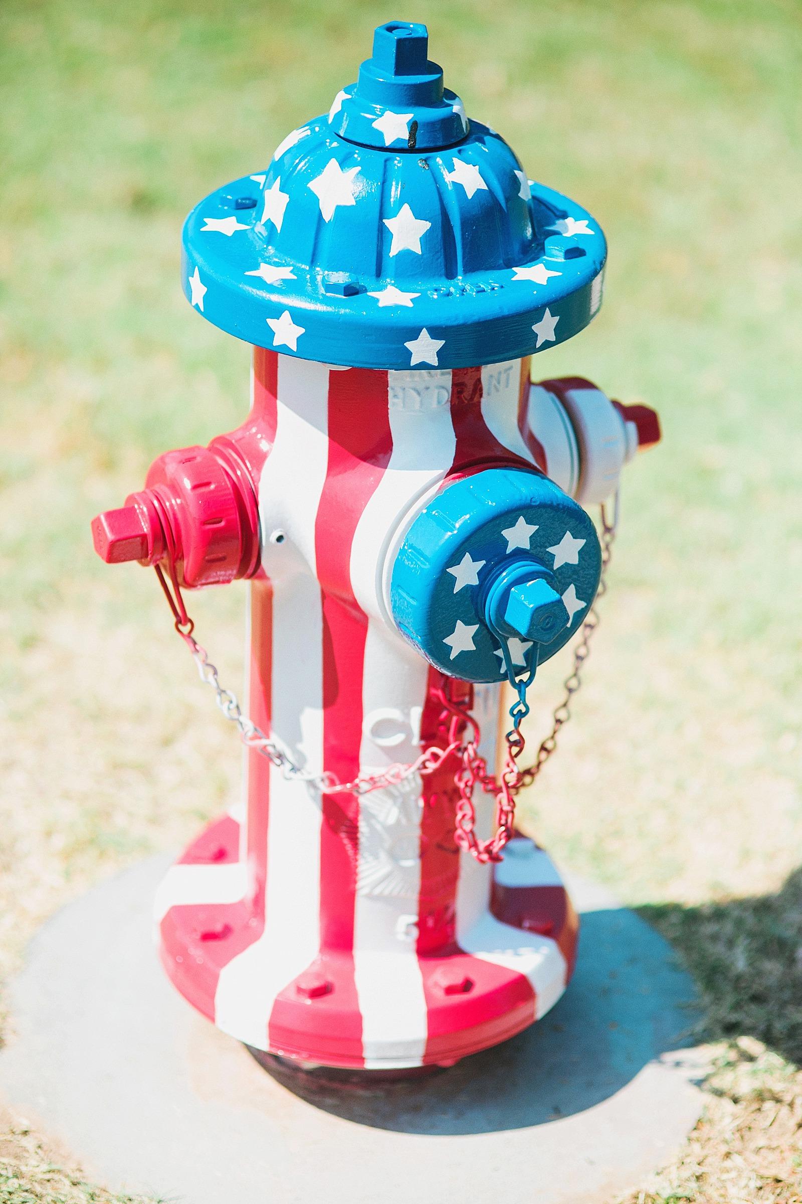 Patriotic American Flag Fire Hydrant | Diana Elizabeth
