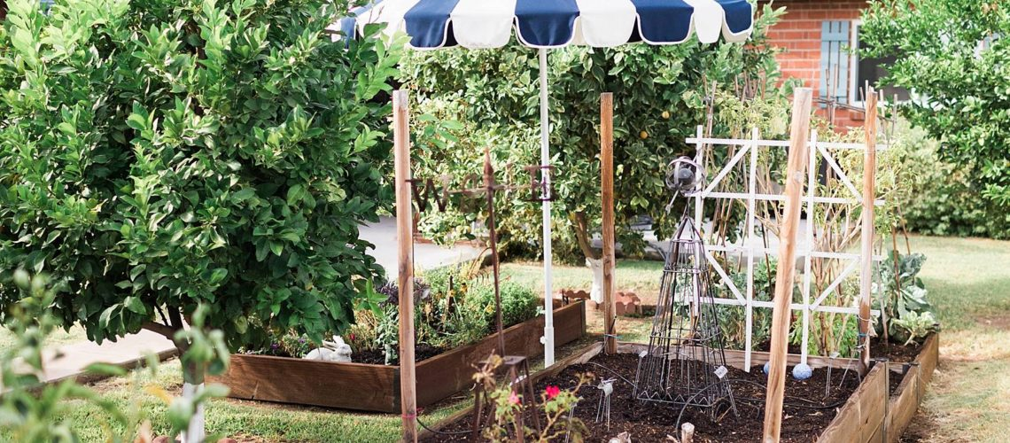 raised garden beds in backyard cute blue umbrella, about fall gardening in phoenix arizona