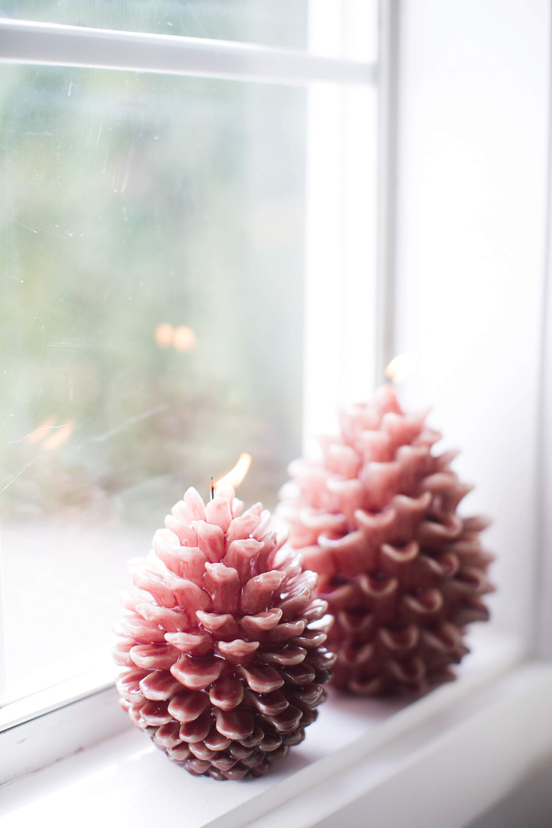 lit pinecones on a windowsill winter shot