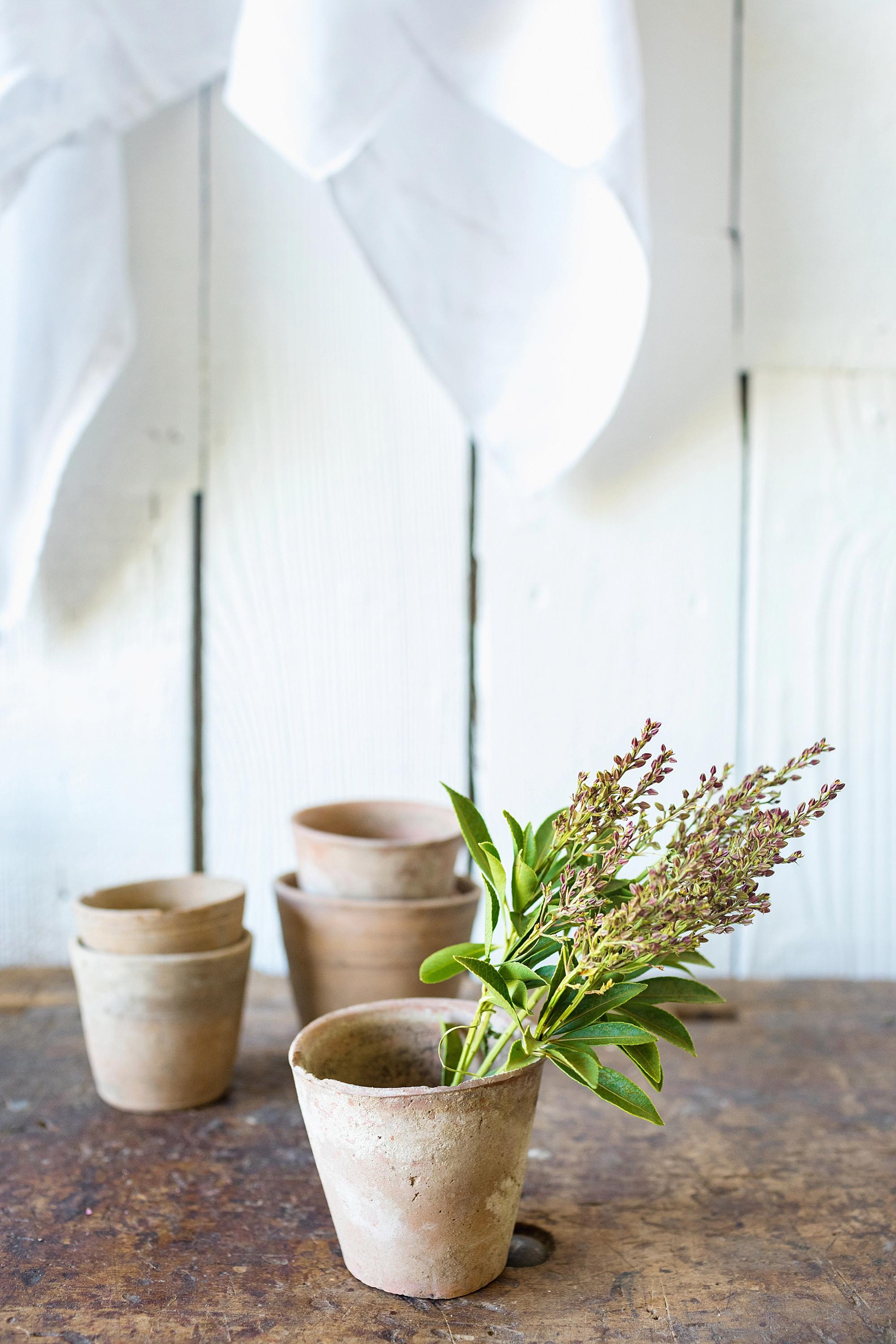 French antique pots for the garden