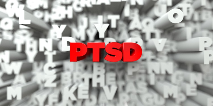 Living with Post-Traumatic Stress Disorder (PTSD): A Tiny Guide for the Clueless