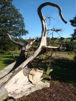Ghost-Tree-8