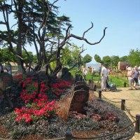 Conceptual Gardens