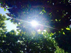 Johnson Oatman's music was described as sunlight
