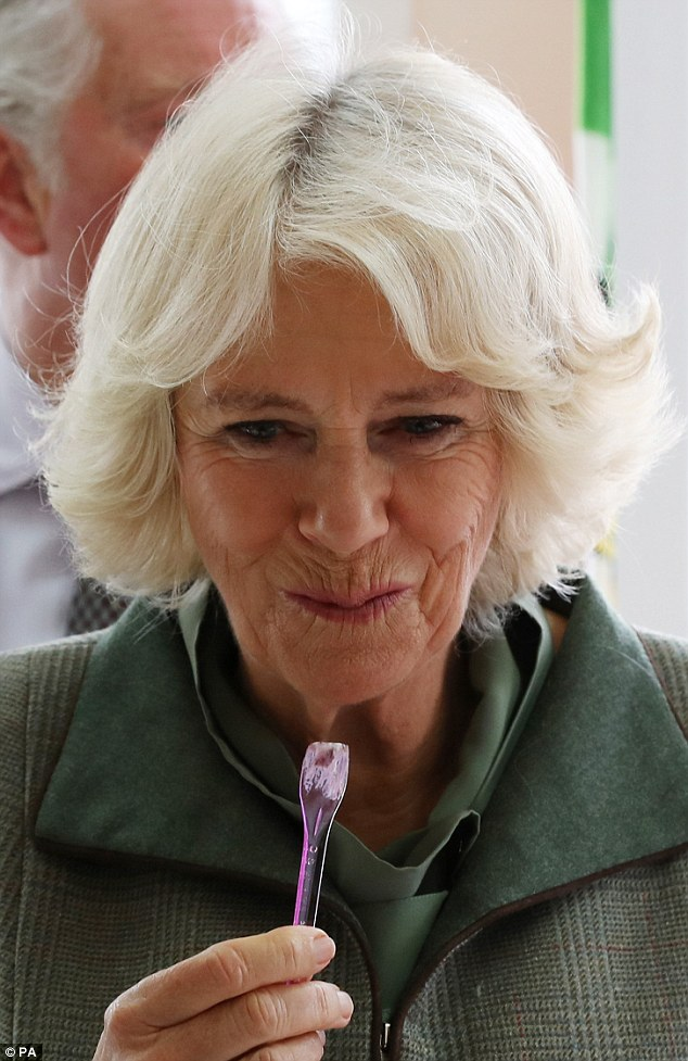 Charles reportedly wants Camilla to be called queen