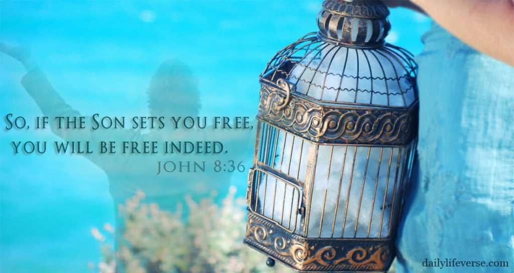From: www.dailylifeverse.com