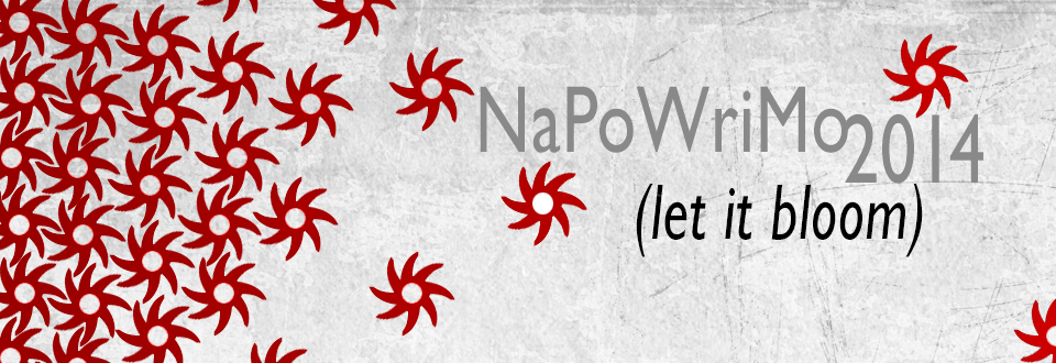 napofeature1
