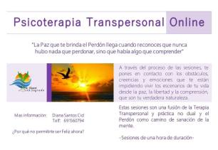terapia transp online