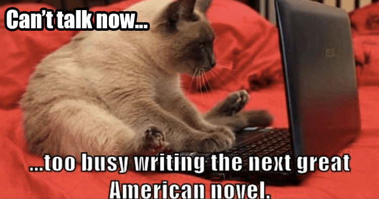 Lolcat Writing