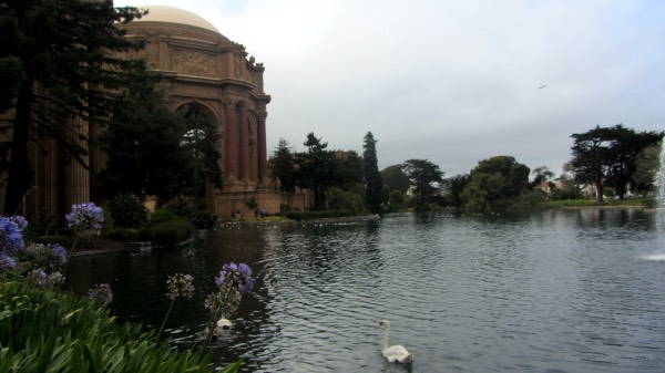 Palace of fine arts São Francisco
