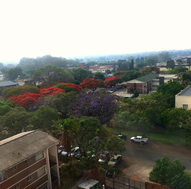 Zimbabwe with World Vision 2014 5