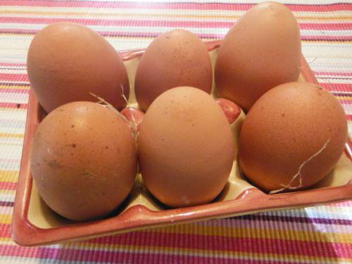Yummy eggs. From happy hens, guaranteed free-range.