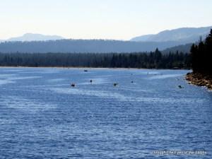 Kayakers enjoying Lake Tahoe