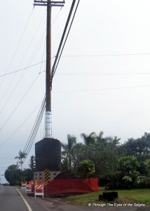 The electric company has wrapped 20 foot of the power poles with lava rock