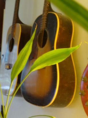guitar_reflection