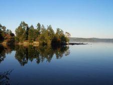 still_reflection_trees_on_shoreline