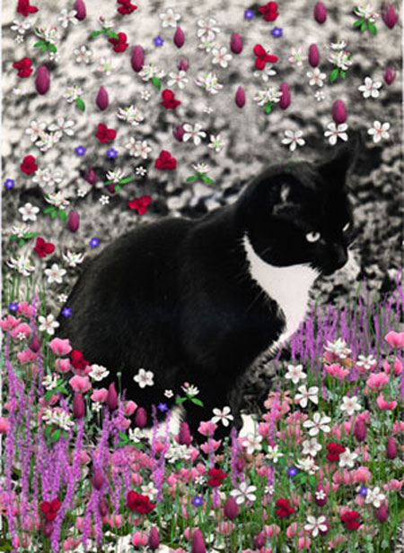 Freckles in Flowers II
