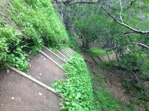 steep-walkway