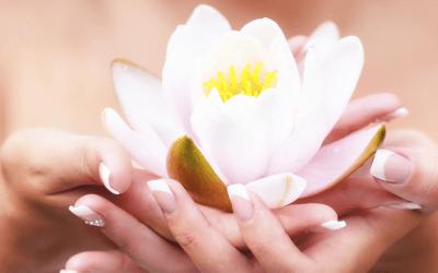 fertility_flower_holding