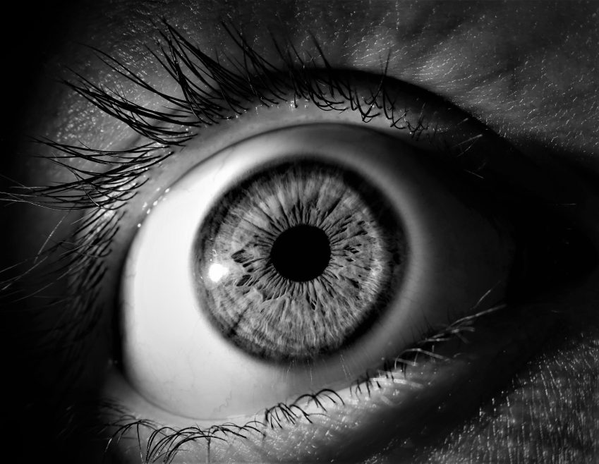 Image by Aline Berry from Pixabay why I watch true crime