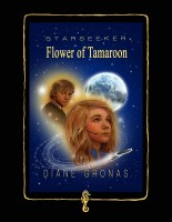 Starseeker Poster Photoshop   Diane Gronas