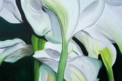 Georgio's Calla Lillies (2) 24x30