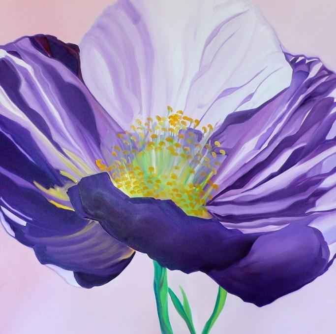Icelandic Poppy 36x36