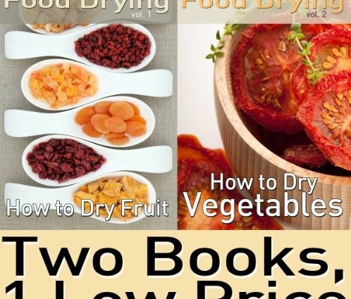 Food Dehydrating cover pic