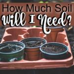 How Much Soil Do I Need?