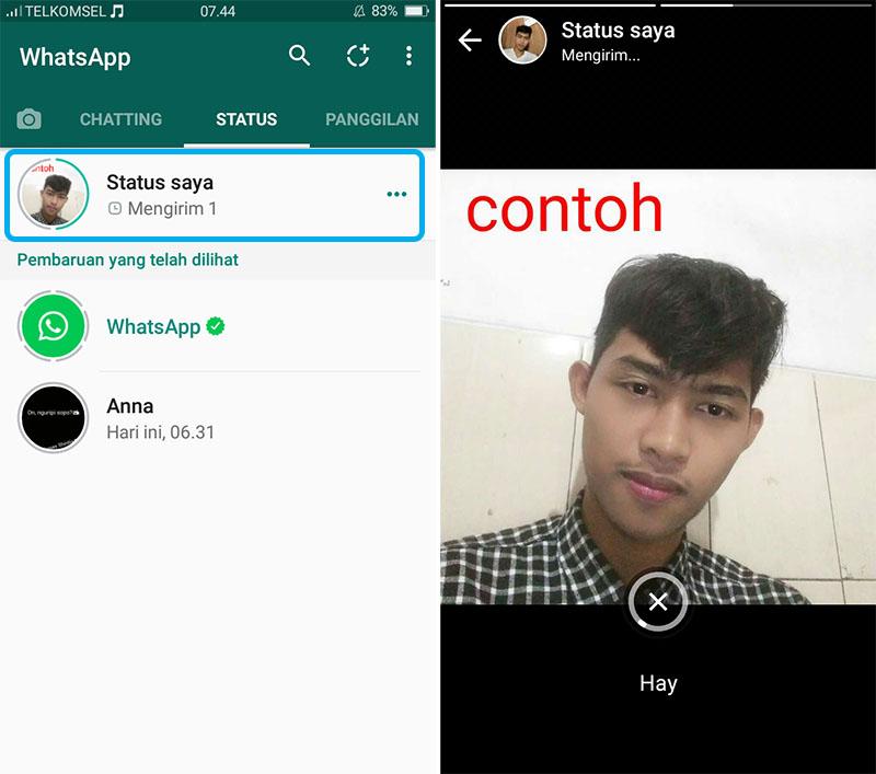Tampilan Status WhatsApp 3
