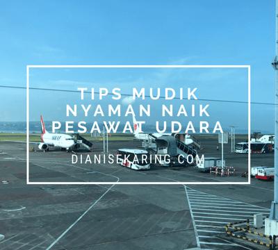Tips Mudik Nyaman Naik Pesawat Udara