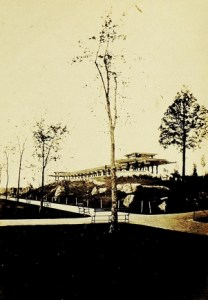 The Mall in 1864 (yes, those are the elms)