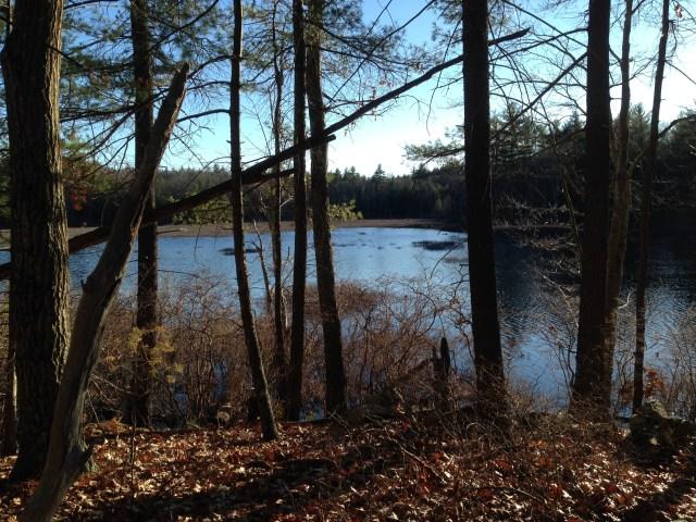 Bartlett Mills Pond.