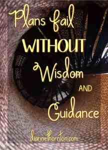 Plans Fail WITHOUT Wisdom PV