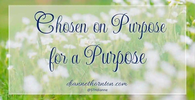 Do you know that you were chosen by God? Chosen on purpose for a specific purpose. You were, you know. He chose you to produce fruit--that will last!