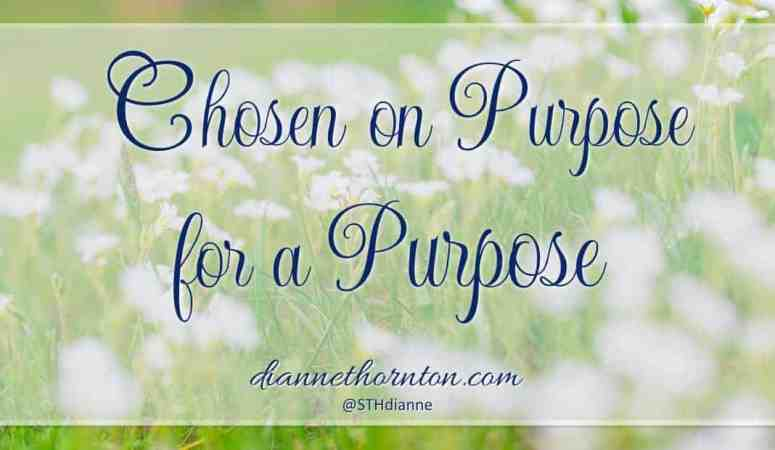 Chosen ON Purpose, FOR A Purpose