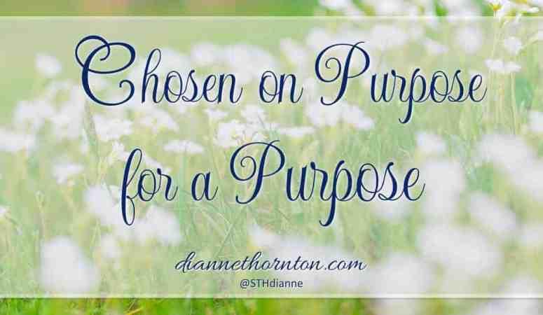 Chosen ON Purpose, FOR A Purpose