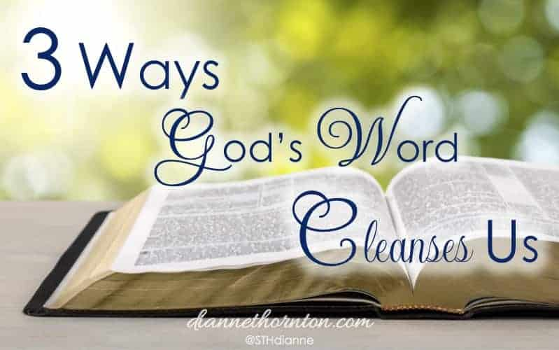 God's Word Cleanses Us. When we sit before Him, looking carefully at His perfect Word--which gives freedom--how do we respond when He shines His light on sin in our lives?