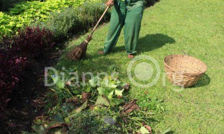 Petugas Kebersihan