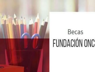 empreses catalanes oportunitat laboral estudians discapacitat