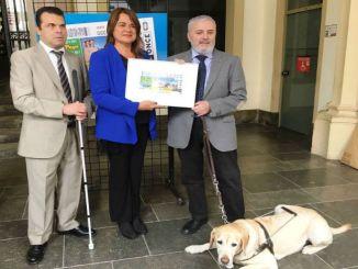 cupó once terrassa premi reina letizia accessibilitat