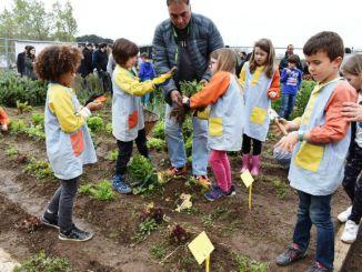 treballador drisa projecte pedagògic inclusió social hort escola