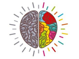 campanya fafac prevenció salut cerebral cuida cervell