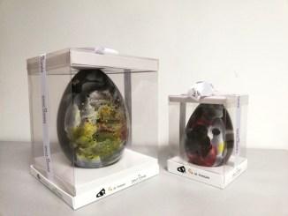 Ous de Pasqua de Sant Tomàs