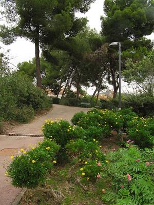 Vista de les rampes dels jardins. Fotografia de M. J. Tort