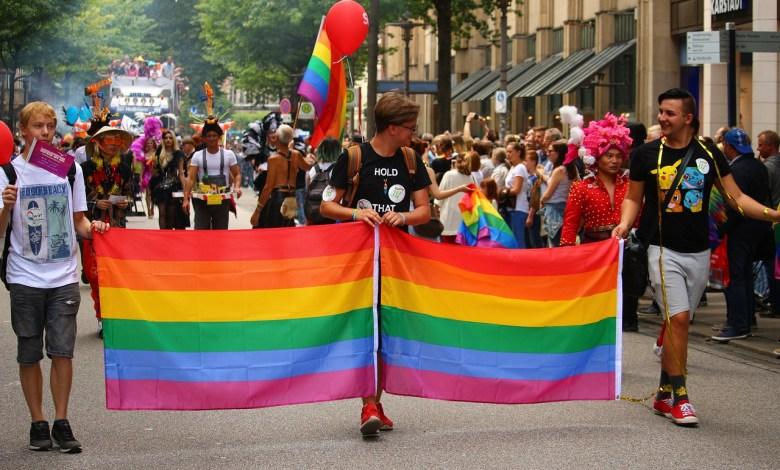 Asociación Psicoanalítica pide perdón por calificar homosexualidad como enfermedad 1