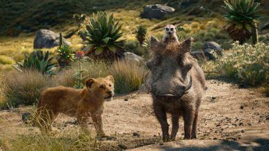 "Photo of ""Lion King"" reina en la taquilla, ""Endgame"" logra récord mundial"