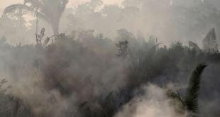 Trump ofrece a Bolsonaro ayuda para enfrentar incendios en el Amazonas 2